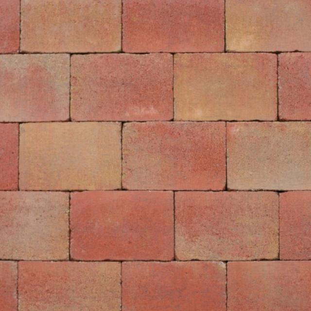 Klinkers Stenen Abbeystones Getrommeld 20x30x6cm Toscaans