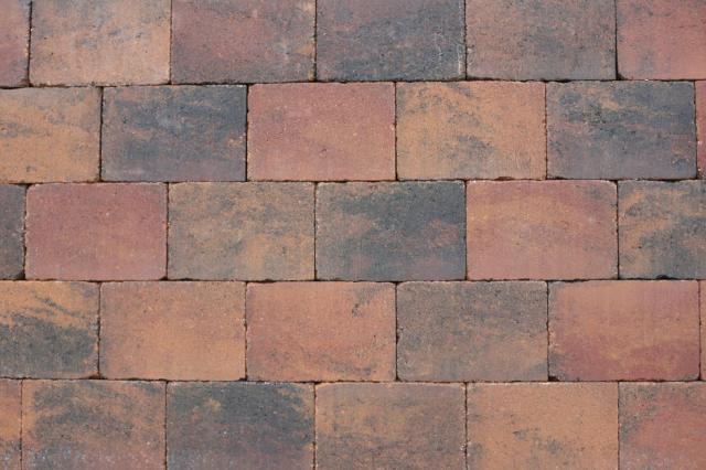 Excluton Abbeystones Getrommeld 20x5x7cm Zomerbont met deklaag