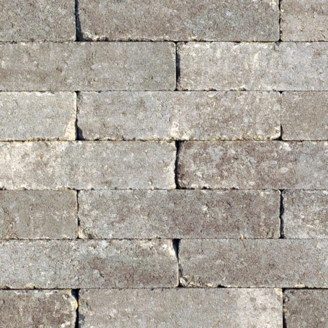 Klinkers Stenen Abbeystones Getrommeld 20x5x7cm Grigio